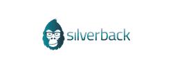 power-bi-koppeling-silverback